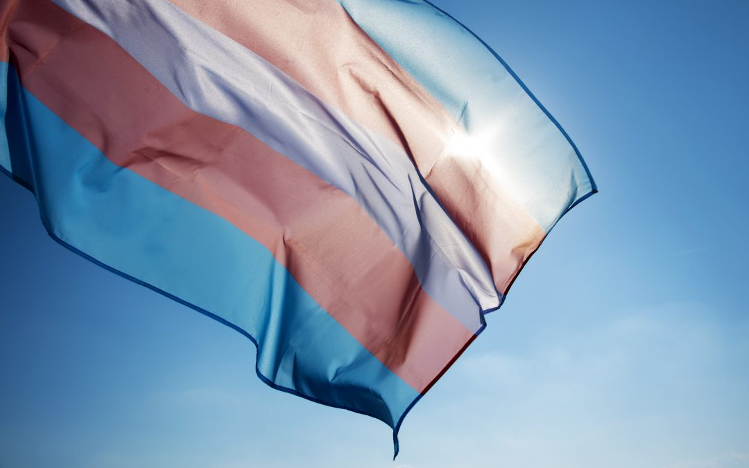 Transgender Telemedicine: Inequities and Barriers in Health Care Access